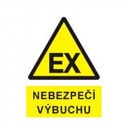 Nebezpečí výbuchu (piktogram EX)